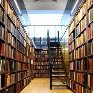 Библиотеки Сернура